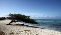 Aruba Vacation Home Rentals