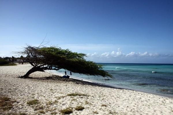 aruba sand beach