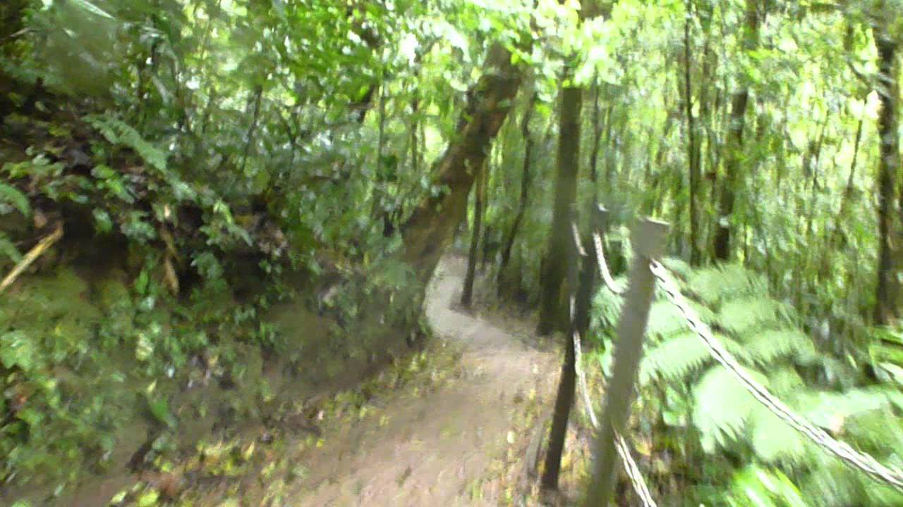 Monteverde Travel Attractions and tour guide