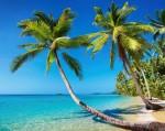 Beach Traveller