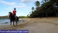 Horseback Riding in Puerto Rico